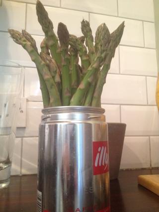 asparagus keeper