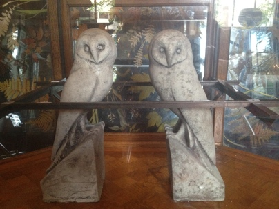 HL_Brunswick_owls