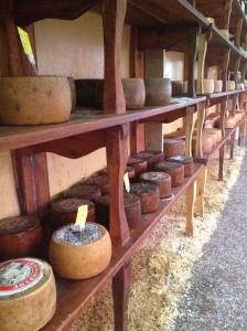 casa del formaggio alghero